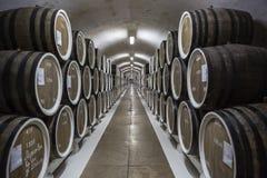 克里米亚 对称在葡萄酒库里 免版税库存图片