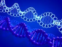 克隆脱氧核糖核酸 皇族释放例证