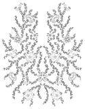 克什米尔无刺指甲花设计时尚 库存照片