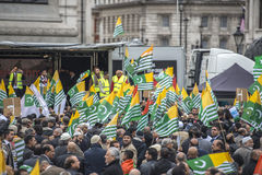 克什米尔示范特拉法加广场伦敦 库存照片