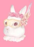 兔子佩带的夜花梢面具 免版税库存图片