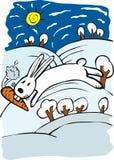兔子冬天 库存图片