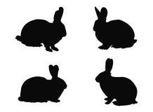 兔子剪影 库存例证