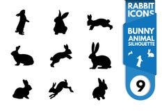 兔子剪影 免版税图库摄影