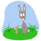 兔子和老鼠 库存照片