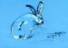 兔子和骆马绘画 库存照片
