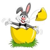 兔子或兔宝宝突然出现被隔绝的大鸡蛋 免版税库存照片