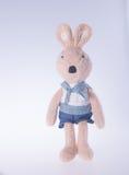 兔子或被充塞的兔宝宝在背景 免版税库存图片