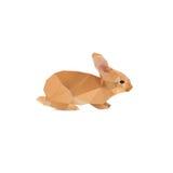 兔子摘要 免版税图库摄影