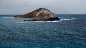 兔子海岛 库存照片