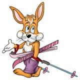 兔子滑雪者 库存图片