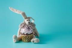 兔子玩偶用杯形蛋糕 免版税库存照片