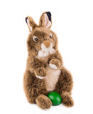 兔子玩具 库存照片
