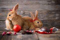 兔子用在老木背景的朱古力蛋 免版税库存照片