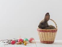 兔子用复活节彩蛋 库存照片