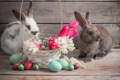 兔子用复活节彩蛋 图库摄影