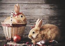 兔子用朱古力蛋 免版税库存照片