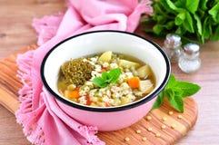 兔子肉的汤用硬花甘蓝、绿豆、红萝卜和面团星 库存图片