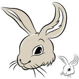 兔子题头 免版税库存照片