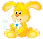 兔子黄色 库存照片