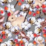 兔子,棉树分支,红色莓果 模式无缝的冬天 水彩 免版税库存图片