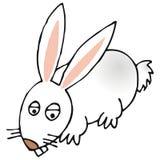 兔子 向量例证