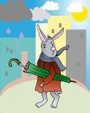兔子witn伞 免版税库存图片
