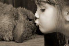 兔宝宝亲吻 库存图片