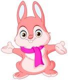 兔宝宝冬天 库存例证