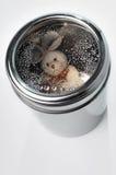 兔宝宝可能金属化 库存图片