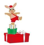 兔宝宝和圣诞节 库存照片