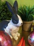 兔宝宝和鸡蛋 免版税库存图片
