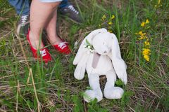 兔宝宝在森林里 库存图片
