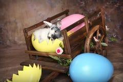 兔宝宝复活节无盖货车 免版税库存图片