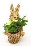 兔宝宝复活节编织了 免版税库存图片