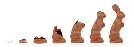 兔宝宝复活节演变 库存图片