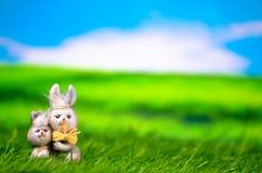 兔宝宝复活节草甸 免版税库存照片