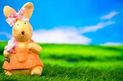 兔宝宝复活节草甸 免版税库存图片