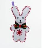 兔宝宝或兔子 免版税库存图片