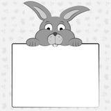 兔宝宝拿着纸片 免版税库存照片