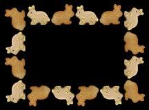 兔宝宝曲奇饼复活节框架 免版税图库摄影