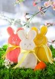 兔宝宝曲奇饼复活节 免版税库存图片