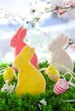 兔宝宝曲奇饼复活节 免版税库存照片