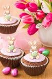 兔宝宝杯形蛋糕复活节 免版税库存图片