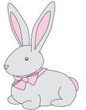 兔宝宝灰色 图库摄影