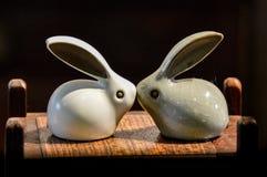 兔宝宝爱 免版税图库摄影