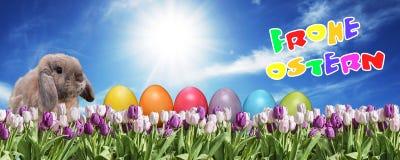 兔宝宝用桃红色的鸡蛋和在草原蓝色晴朗的天空的招呼白色的郁金香愉快的东部文本德国人 库存照片