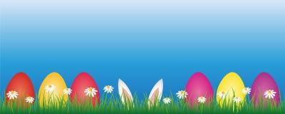 兔宝宝耳朵和五颜六色的复活节彩蛋在有戴西花横幅的绿色草甸与拷贝空间 皇族释放例证