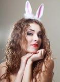 兔宝宝耳朵 图库摄影