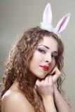 兔宝宝耳朵 库存照片